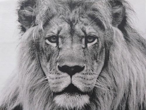 1.Tissu imprimé customisé le LION