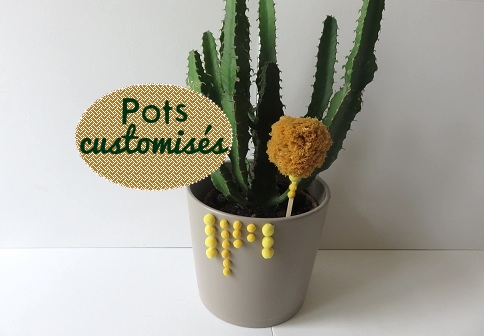 03. Pots customisEs