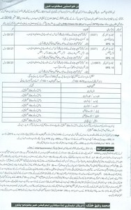 sst jobs in kpk
