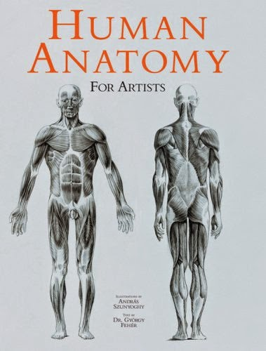 Human Anatomy For The Artist Pdf Free Download - All ...