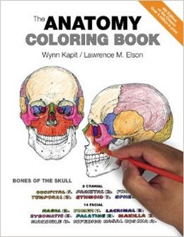 Human Anatomy Coloring Book.pdf : human, anatomy, coloring, book.pdf, Human, Anatomy, Coloring, Download, Medical