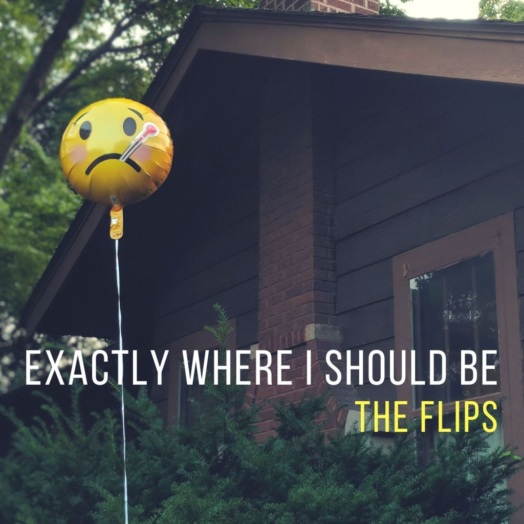 The Flips – What's the Plan