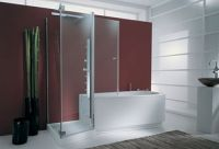 A Walk In Tub Shower Combo for Ease and Comfort - All My ...