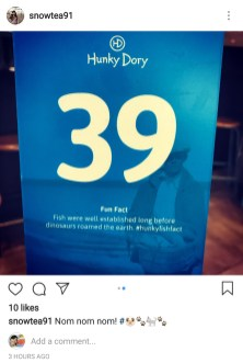 An instagram friend of mine posted this. 39 fun facts about fish, I think. Lol