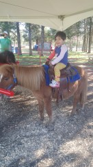 Pony rides are always a must