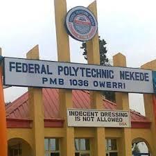 Fed Poly Nekede