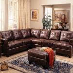 Samuel Contemporary Leather Sectional Sofa All Nations Furniture