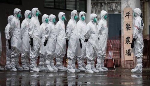 h7n9_pandemic.jpg