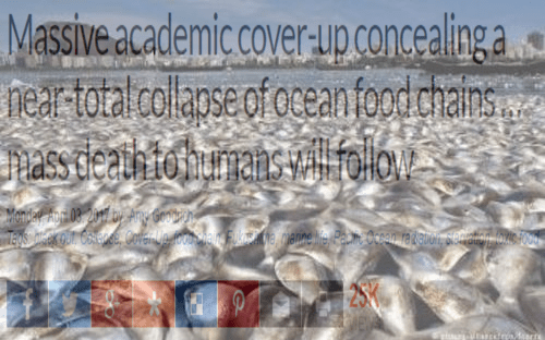 mass_fish_deaths_food_chain_collapse.png