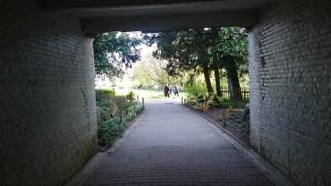 Colonial Garden