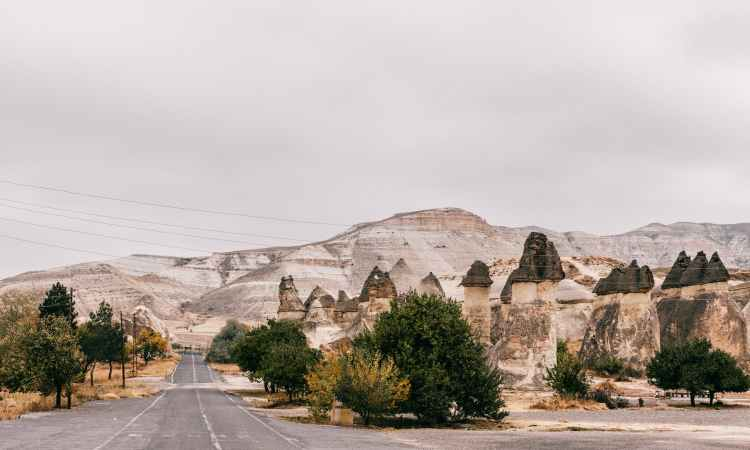 road surrounded with rocky formation and green trees