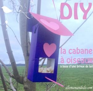 cabane oiseaux diy