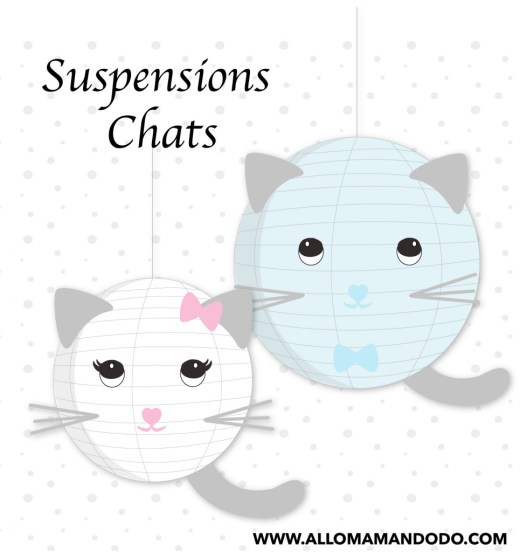 boule chinoise DIY chat