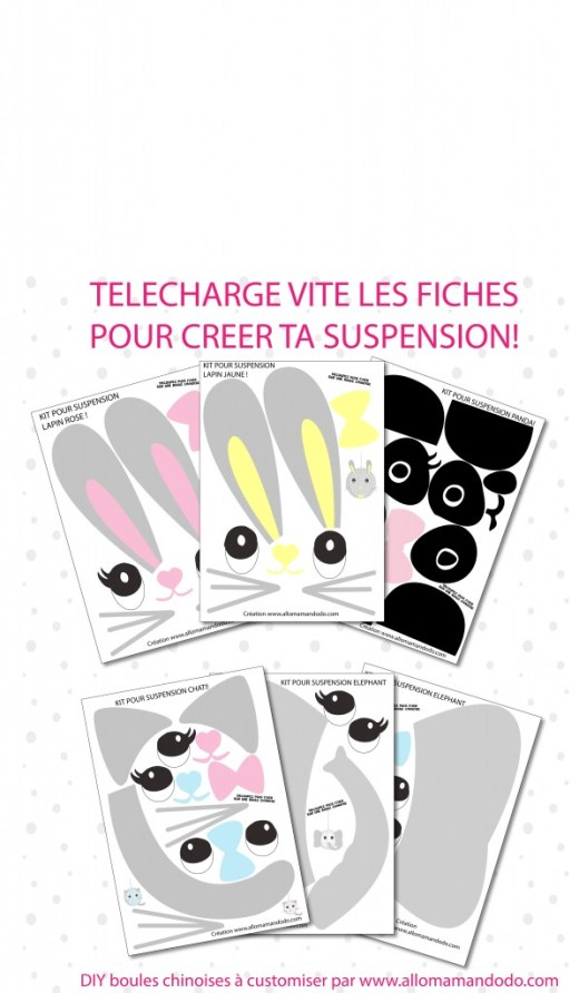 fiches animaux boules chinoises