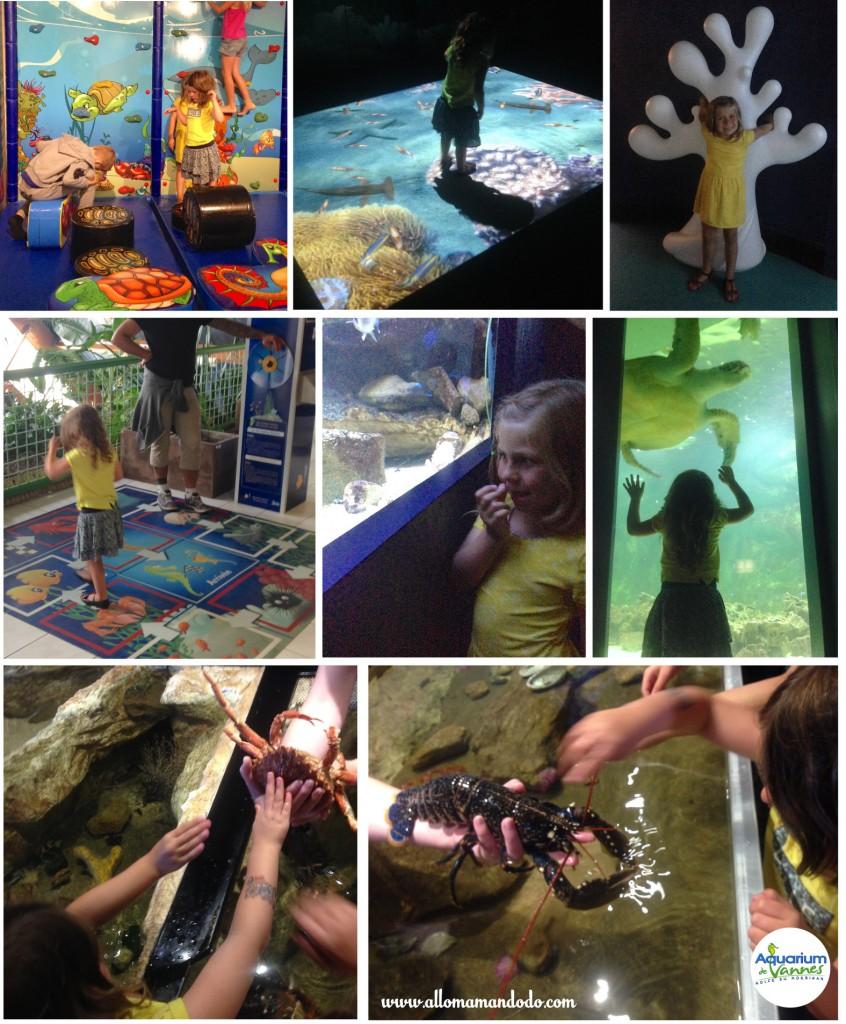 aquarium enfants