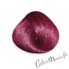 tulipe-noire-coloration-cheveux-directions-semi-permanente-1