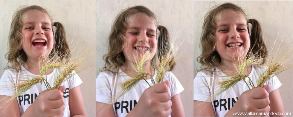 ptitepomme blé