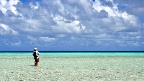 RS Fish On Toau Tuamotus Eastern anchorage