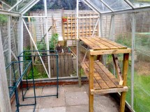Greenhouse Allotmentinmygarden