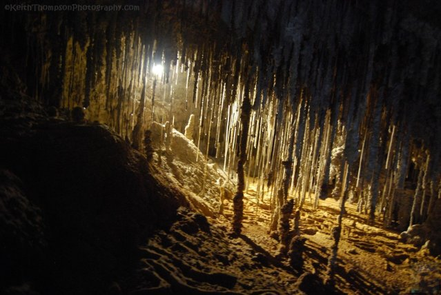 Marakoopa Caves.014 -10h26m45s2019-03-02