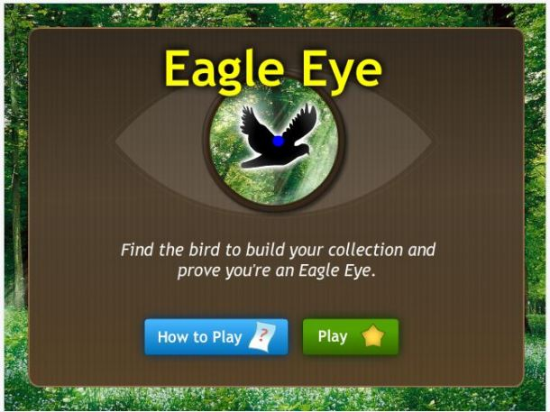 Eagle Eye Game