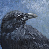 Raven by Liz Ashley Oil on Panel