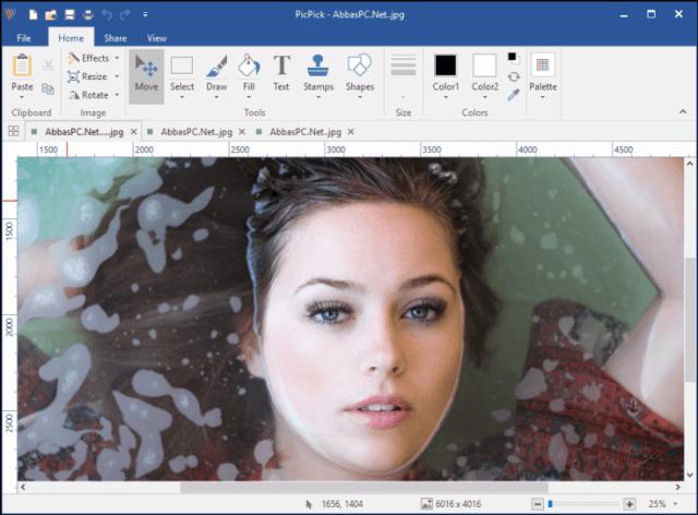 PicPick Professional 5.1.8 Free Download