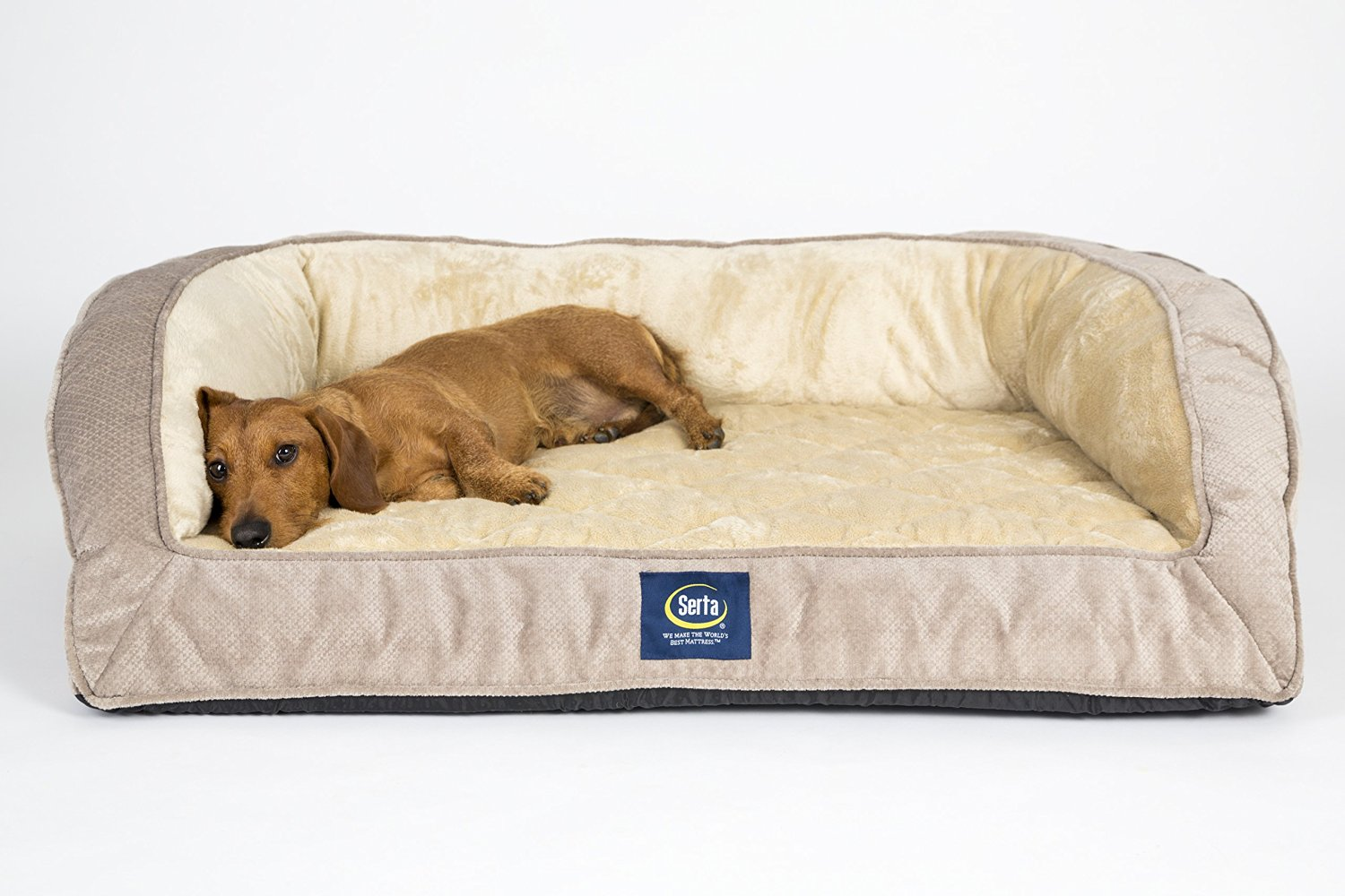 sofa dog bed skymall sofas sectional lounger options all pet cages