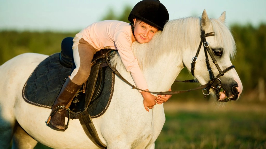 horse-riding helmets for youth