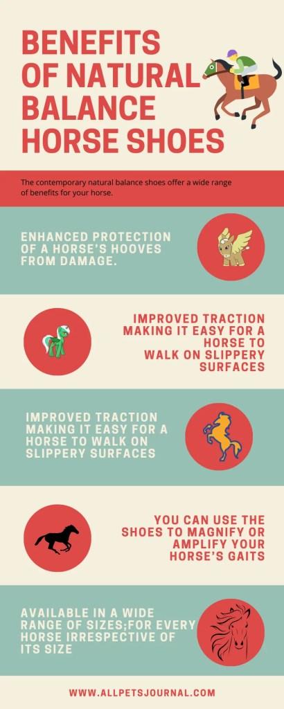 BENEFITS OF NATURAL BALANCE HORSE SHOES
