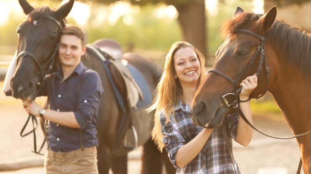 NATURAL BALANCE HORSE SHOE