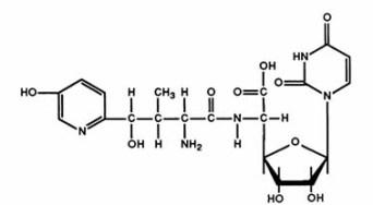 Nikkomycin structure