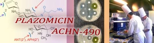 Plazomicin copy