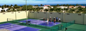 pickleball camps