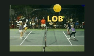 pickleball lob
