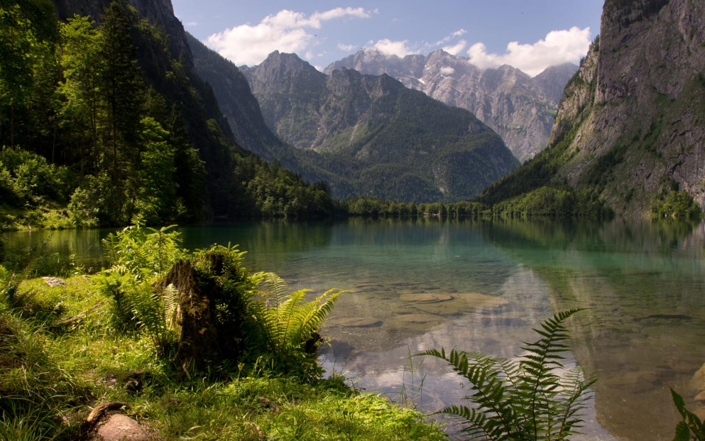 Free Fall Season Wallpaper Hd Nature Wallpaper With Picture Of Obersee Lake German