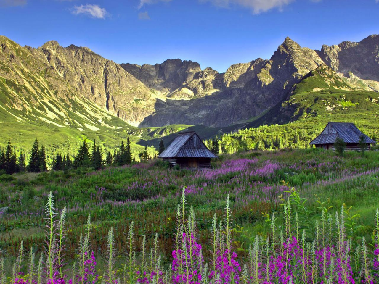 Hd Wallpapers Butterflies Widescreen Polish Tatra Mountains Wallpaper In Hd Hd Wallpapers
