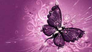 Attachment file for Wallpapers HD with butterfly photos free download in 3D