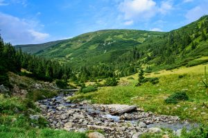 Nature wallpaper with green hill and river