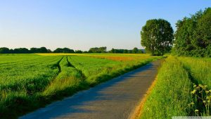 Attachment file for Natural Image in HD with Picture of Road in Village