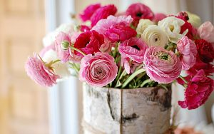 Flowers That Look Like Roses with Ranunculus