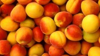 Peach Color Wallpaper with Peach Fruits Picture | HD ...