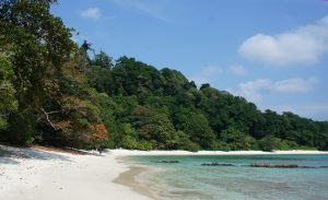 HD Nature Wallpapers with Havelock Island Beach