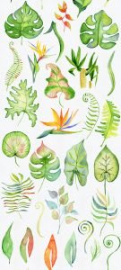 10 Wallpapers That Will Look Perfect on Your Samsung Galaxy S20 - #09 - Tropical Leaves