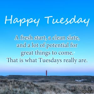 20 Most Favorite Tuesday Motivation Images and Tuesday Thoughts 10 - That is what Tuesdays really are