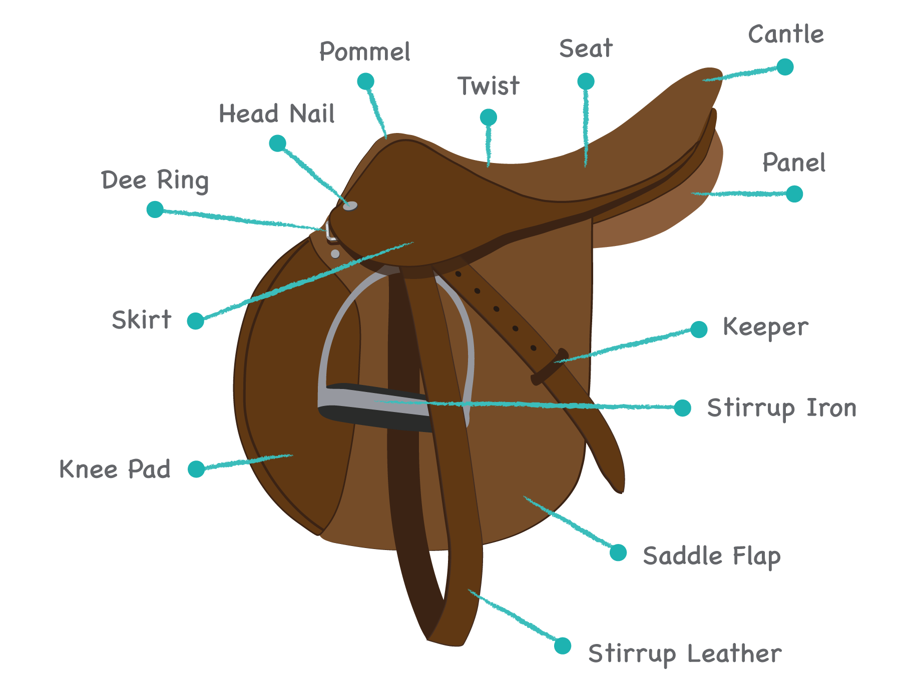 the different parts of a horse saddle And then there are all kinds of saddles developed in different parts of the world to  address the kinds of riding they have done over history there are books.