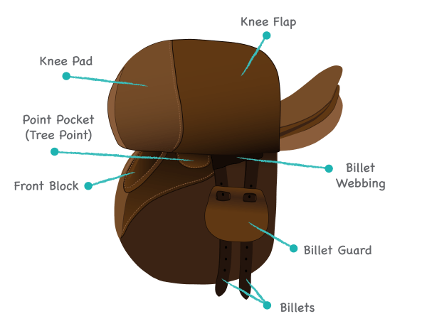 Parts of the saddle under the flap