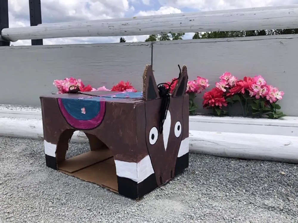 make a pony out of a box craft
