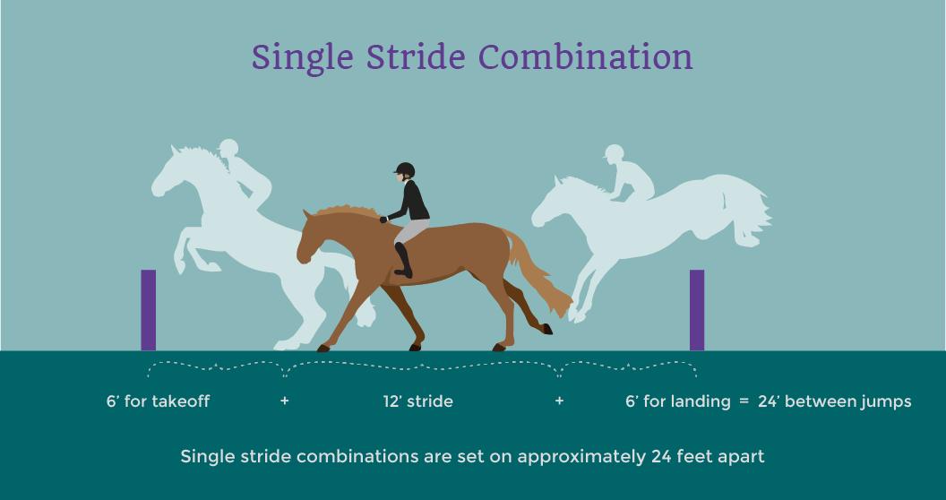 horse single stride jump combination illustrated