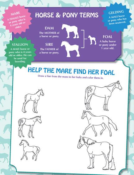 Mare Foal